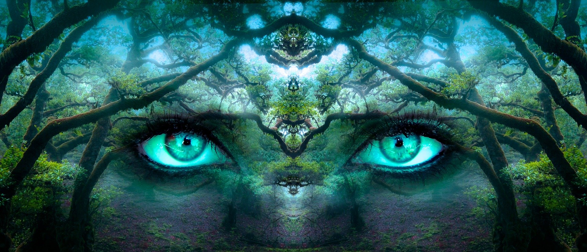 WITNESS  ✵  Why You Must Become the Observer of Your Life